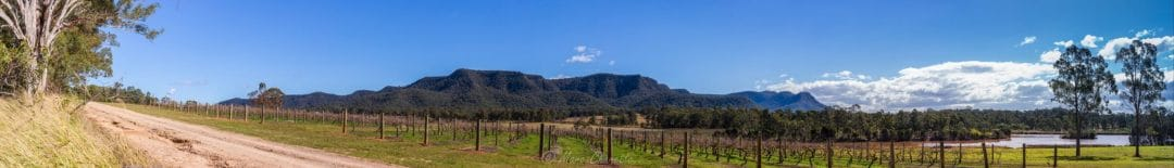 hunter Valley gigapan